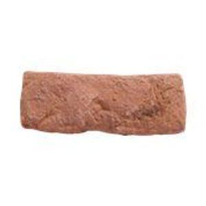 Piso Cimentício Passeio Center Brique 10 Puro 21x6,5cm Vermelho