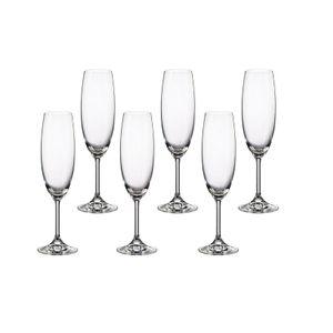 Jogo de Taças para Champagne 220ml Bohemia Martina 6 Peças